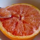 Gebakken grapefruit met honing